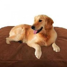 Memory Foam Pad Pet Bed – Orthopedic Memory Foam Pad Pet Bed Review