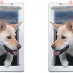 Pet Door with Telescoping Frame – Ideal Pet Pet Door Review