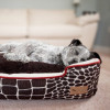 P.L.A.Y. Pet Lifestyle and You Lounge Bed Review
