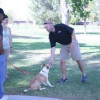 Puppy Training Schedule Week By Week