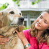 How To Take Care Of Dogs – Understanding Responsibilities