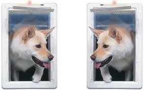 Pet Door with Telescoping Frame
