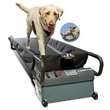 PetZen DogTread Dog Treadmil