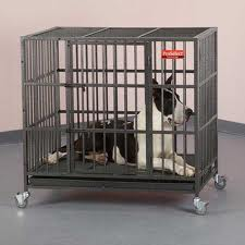 Pro Select Dog Cage Review
