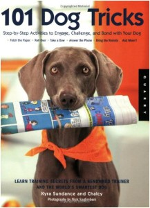 Best Puppy Training Book